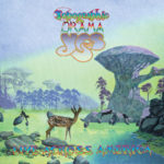YES-Topographic Drama