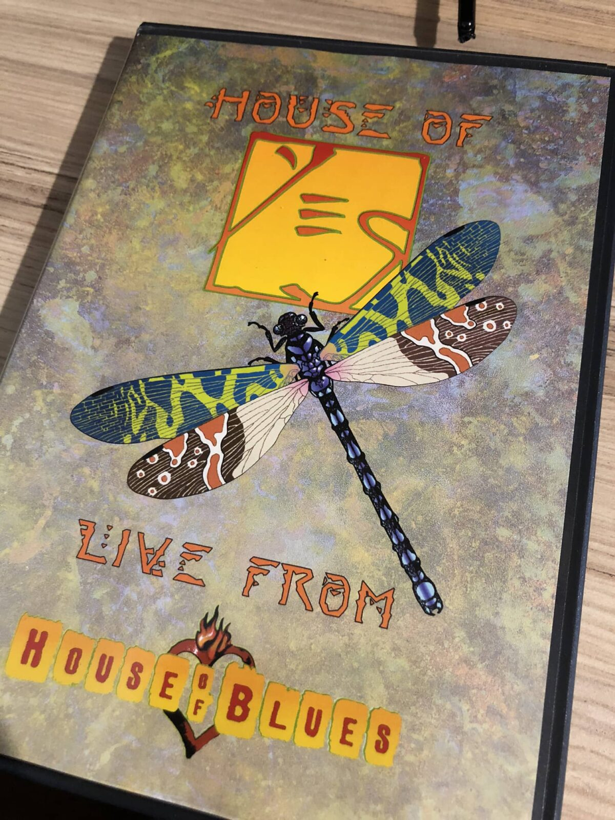 House of Yes!